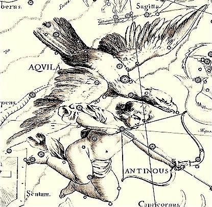 Aquilapic
