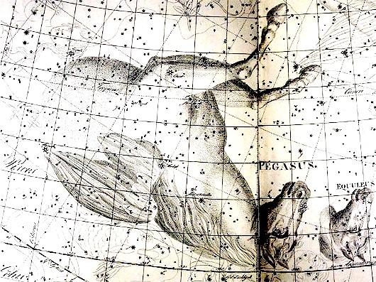 Pegasus Bode