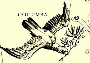 columbapic
