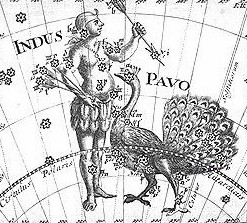 Pavo and Indus