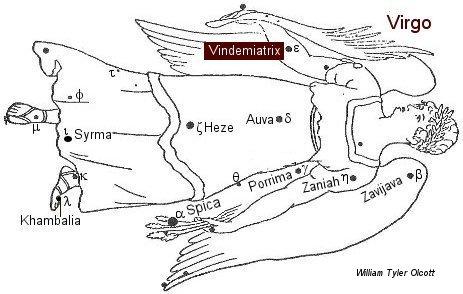 Vindemiatrix