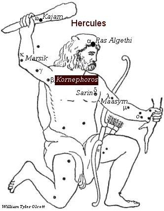 Kornephoros
