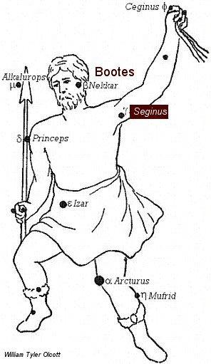 Seginus